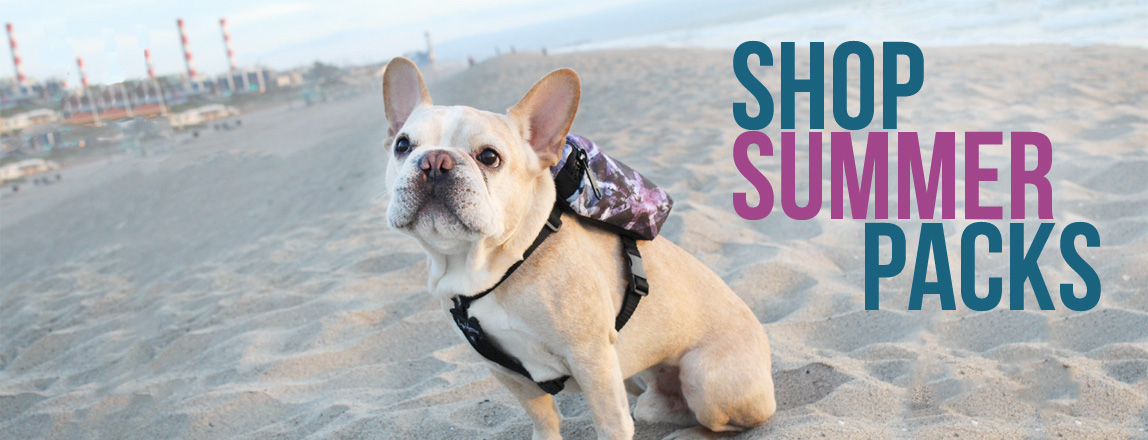 Shop Summer Dog Packs by Maggie Modena